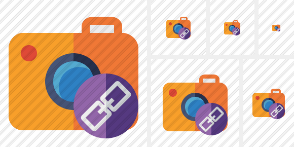 Photocamera Link Icon