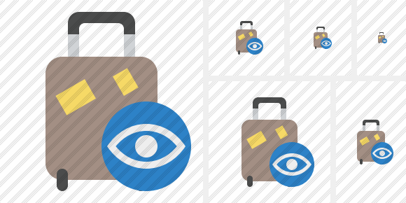 Baggage View Icon