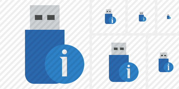 Flash Drive Information Icon