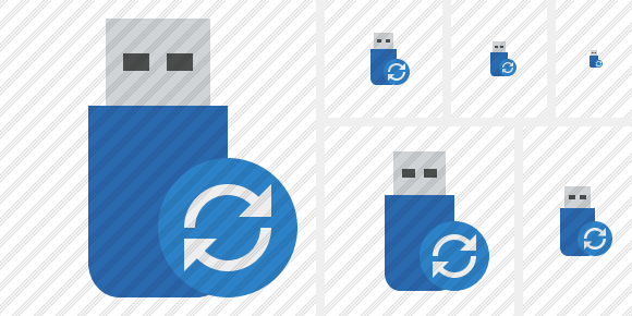Flash Drive Refresh Icon