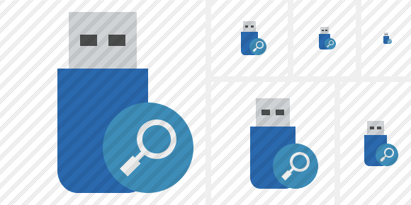 Flash Drive Search Icon