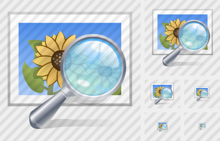 Picture Preview Icon