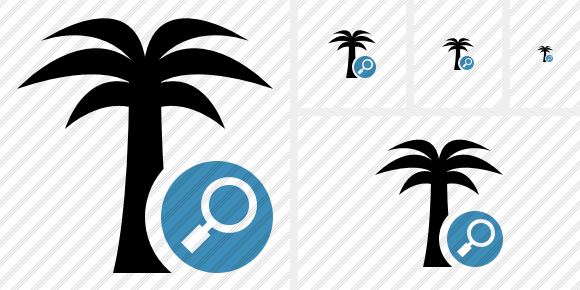 Palmtree Search Icon