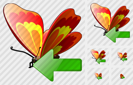 Butterfly Import Icon