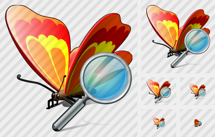 Butterfly Search Icon