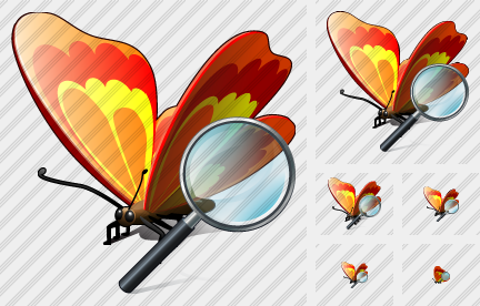 Butterfly Search 2 Icon
