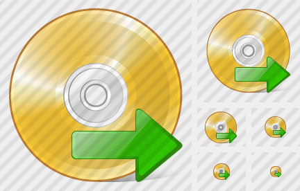 Compact Disk Export Icon