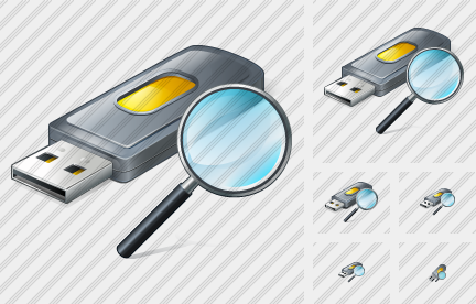Flash Drive2 Search 2 Icon