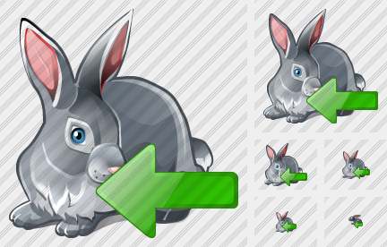 Rabbit Import Icon