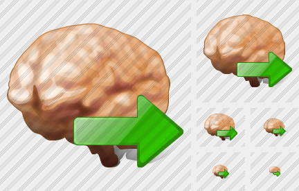 Brain Export Icon