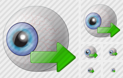 Eye Export Icon
