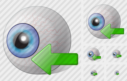 Eye Import Icon