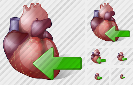 Heart Import Icon