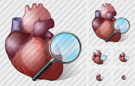 Heart Search 2 Icon