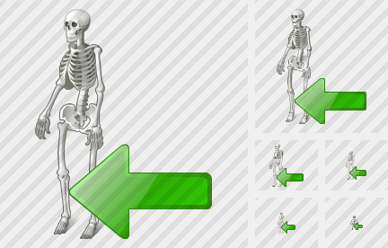 Skeleton Import Icon