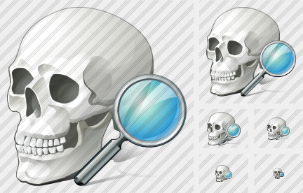 Skull Search Icon