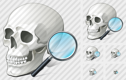 Skull Search 2 Icon